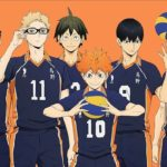 Haikyuu Filler List + Canon List